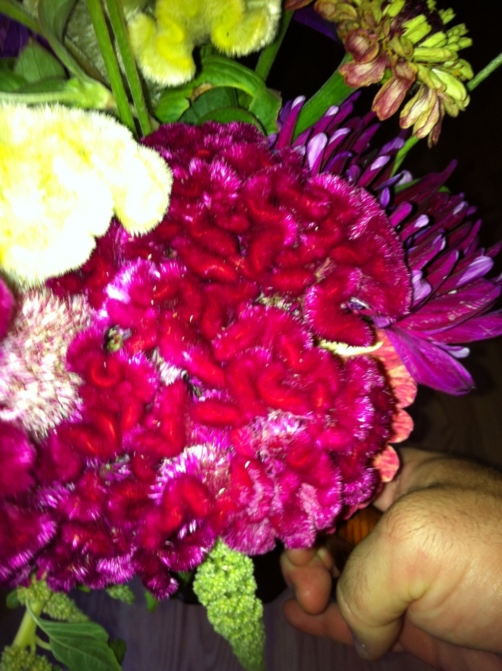 The Most Beautiful Flowers Come From Silver Lake Farms Pure
